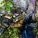 A stream ©mrklein_