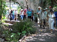 DSC_0030B Walkers Roma Street gardens Standard Screen_01