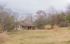 Botanical Garden, San Antonio, Texas