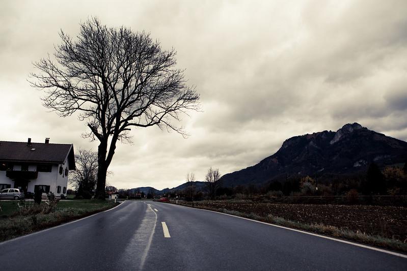 Tree_Kufstein,Ger_G.LHeureux-7622