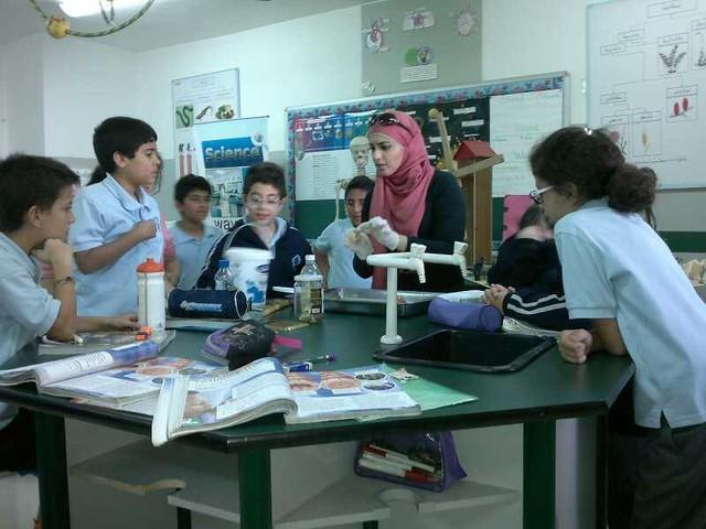 Science Labs Activities