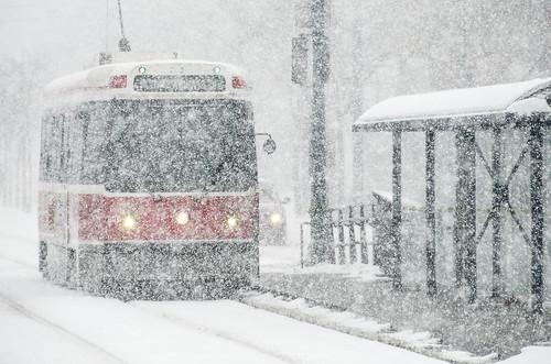 Spadina Streetcar Flurries