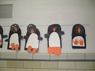 School Bulletin Board / Wall Displays