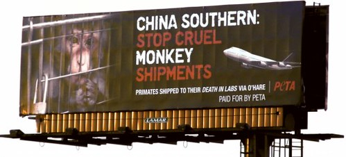 PETA在航空公司進口靈長類動物的國際機場外刊登巨幅廣告,PETA提供