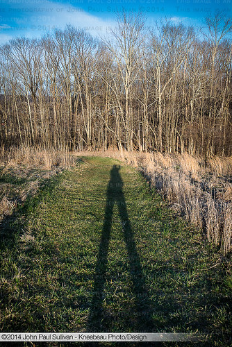 trees sunset shadow ohio usa selfportrait tree grass self landscape woods nikon unitedstates athens dslr goldenhour ridges d800 noleaves earlyspring johnsullivan theridges kneebeau 45701 johnpsullivan johnpaulsullivan