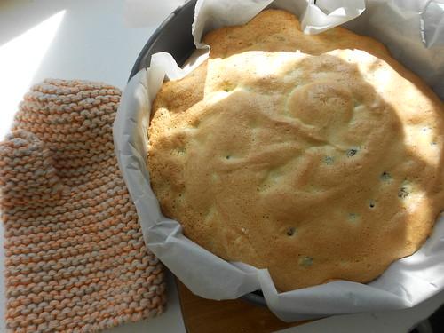готовый бисквит и прихватка