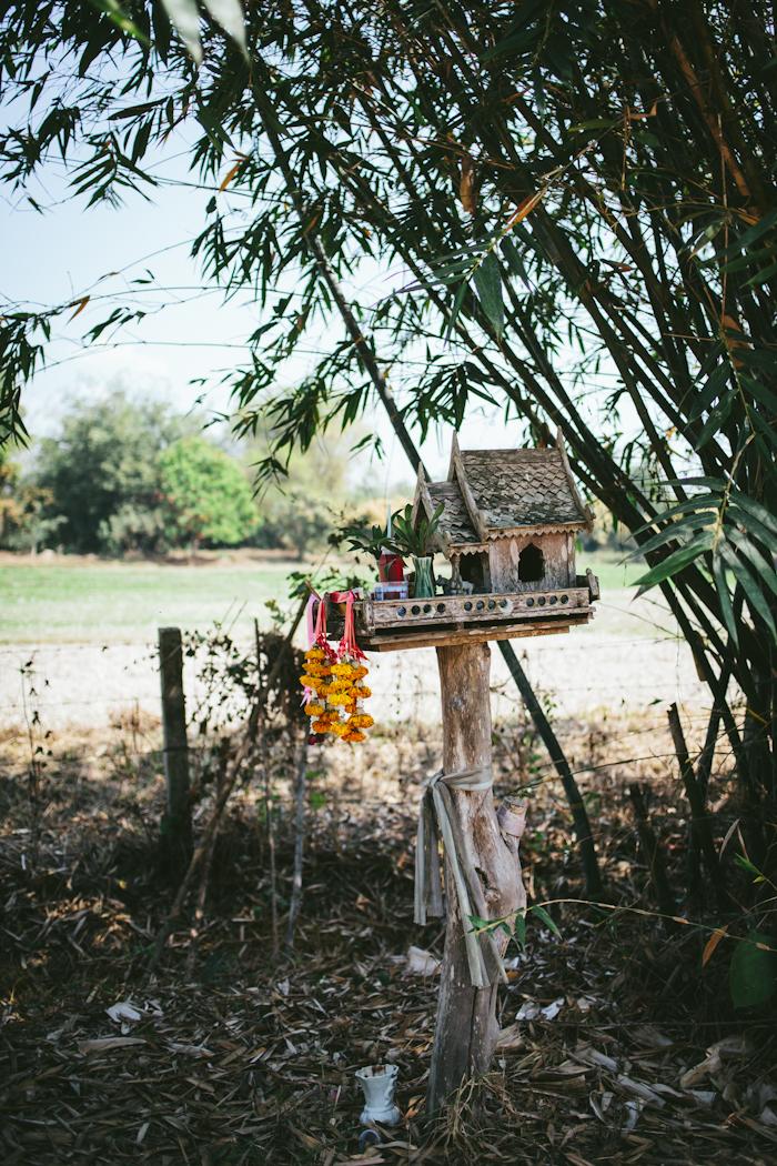 Thai Farm Cooking School   Adventures in Cooking