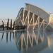 """Museo della scienze """" Principe Filippo""""  by S.Calatrava"""