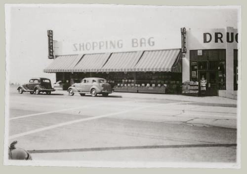 The Shopping Bag