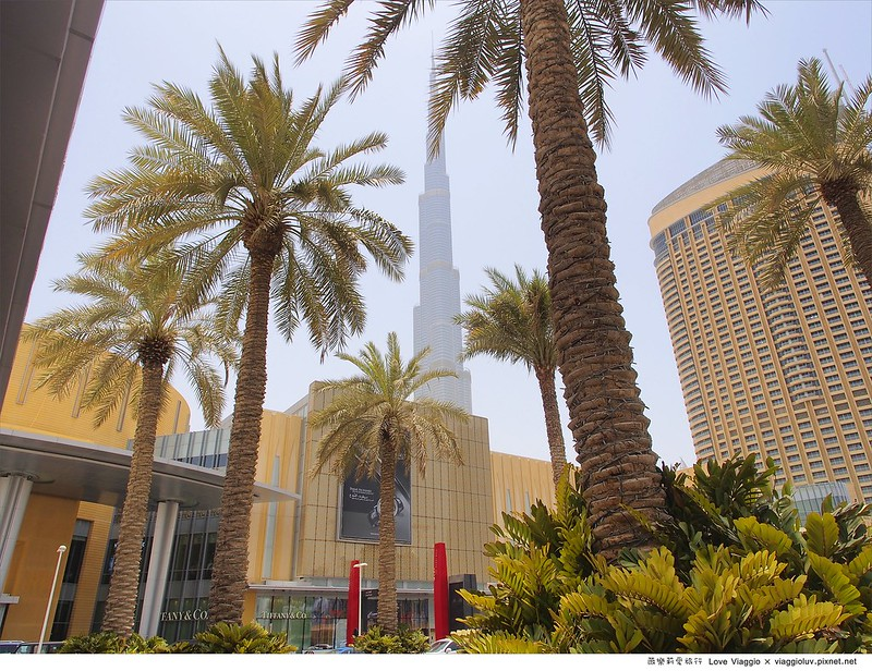 【杜拜 Dubai】The Dubai Mall & Aquarium杜拜購物中心及世界最大室內水族館 @薇樂莉 Love Viaggio | 旅行.生活.攝影