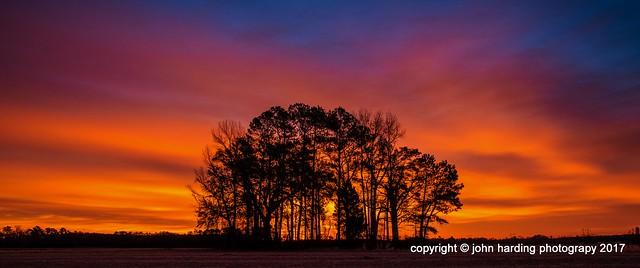 Center Grove at Dawn