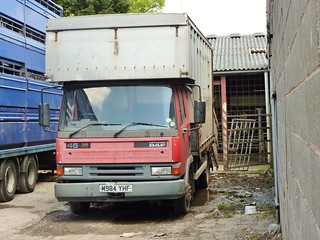 M984 YHF - Leyland-DAF 45 130 - Livestock carrier - ex- Royal Mail Parcel Force.