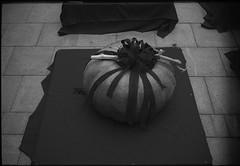 Leica Life #5