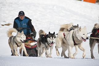 No sólo el esquí, sino otros deportes de nieve se practican en Cerler.