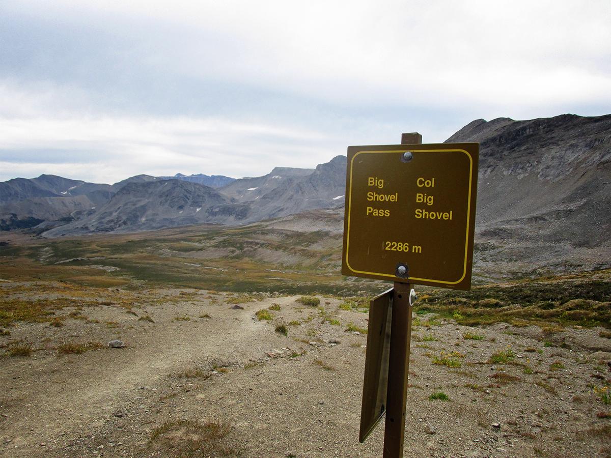big shovel pass
