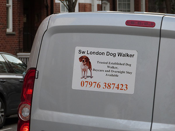 london dog walker