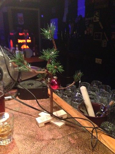 A youngin' at happy hour asked the bartender why this was such a lonely little tree. Really? by gmwnet
