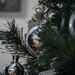 Reflective Christmas by MjZ Photography