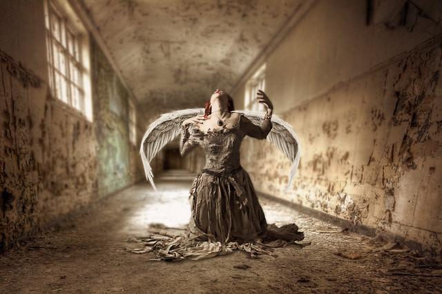 Angels of the Asylum