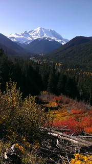 Pacific Northwest Fall - Mount Rainier