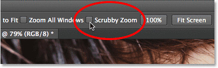 scrubby-zoom-option