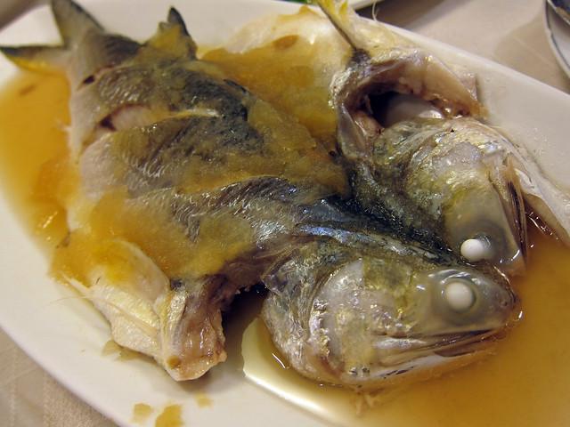 午仔魚01