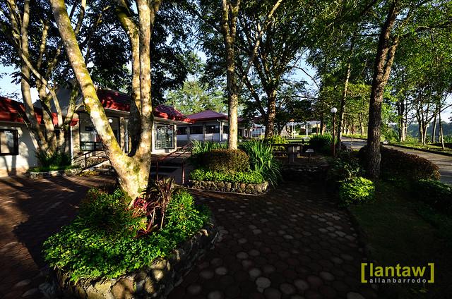 Trappistine Monastery Garden
