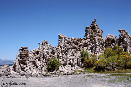 Mono Lake CA (11) Aug 2013_feistyharriet