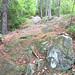 Fire Warden Ridge Climb