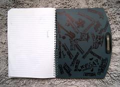 Found: Nyssa's Diary