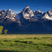 Mighty Tetons