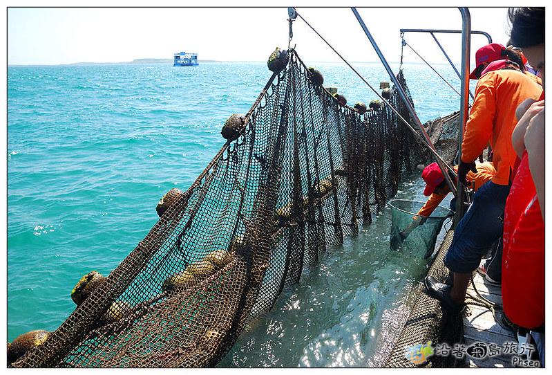 2013元貝休閒漁業_29