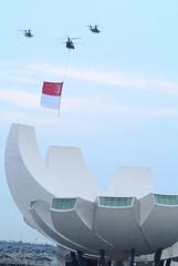 Flag Flypast