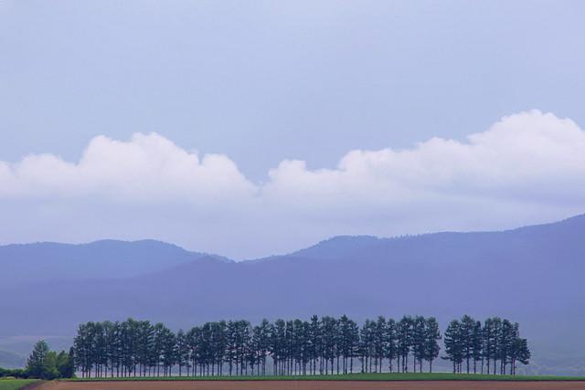 Another Landscape1