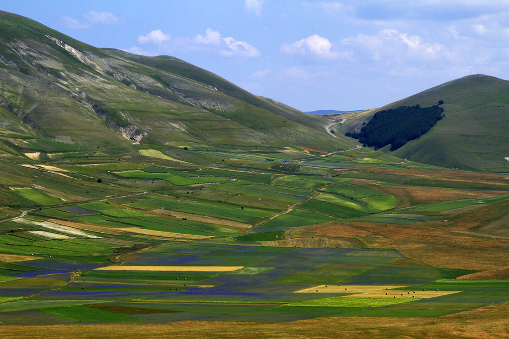 Elevation of piani di castelluccio italy maplogs for Piani di washington