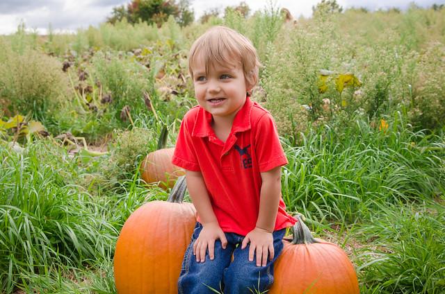 20131012-Pumpkin-Patch-0831