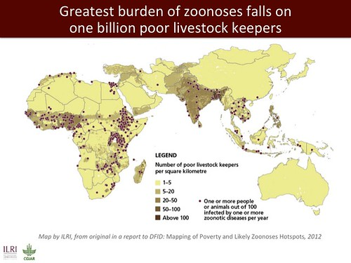 Greatest burden of zoonoses falls on one billion poor livestock keepers