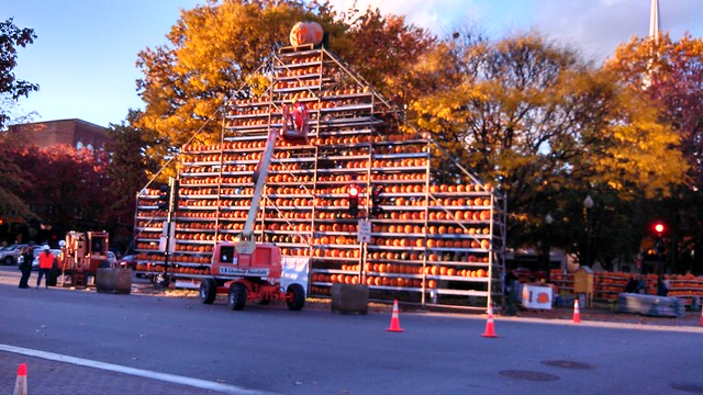 Pumpkin Fest 2013