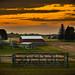 Sunset Farm by kathiland
