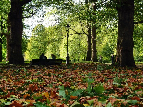park uk autumn trees england urban green london fall nature lamp leaves bench lumix streetlamp panasonic foliage greenpark gb uploaded:by=flickrmobile flickriosapp:filter=nofilter
