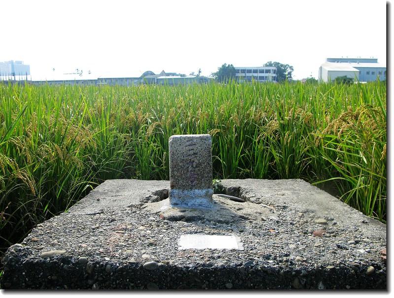 雲林斗六三等三角點(# 229 Elev. 41 m) 1