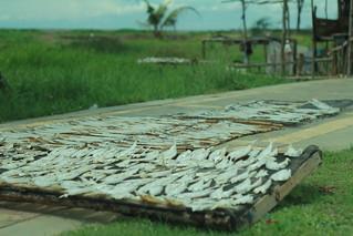 Ikan Asin Mendunia