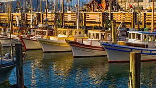 Fishing boats @ fisherman's wharf