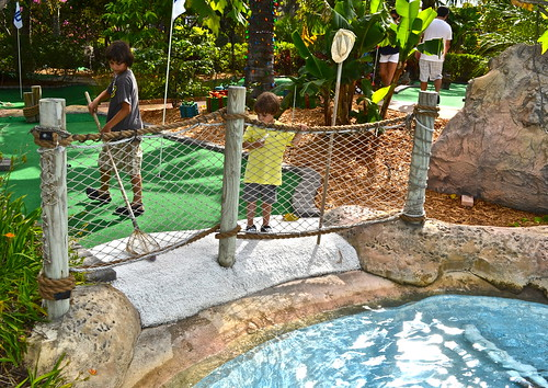 Mini Golf - Putt N Around, South Florida - getting ball out of water