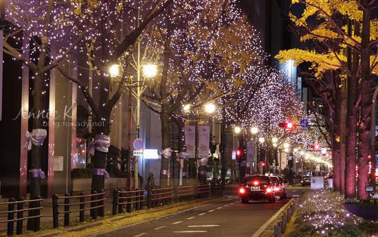 御堂筋_粉紫色燈