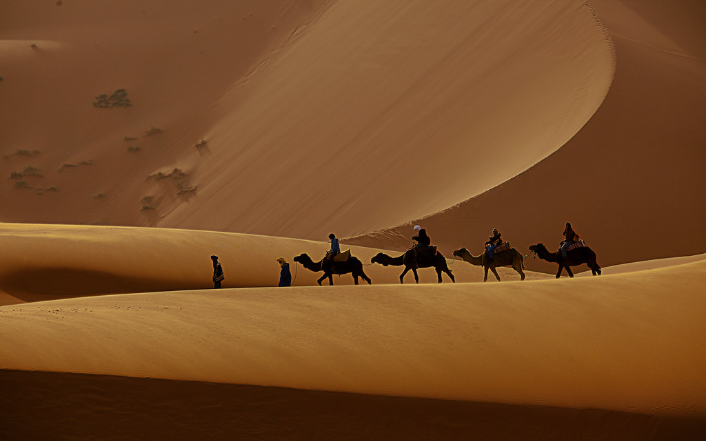 Camel Ride in Erg Chebbi, Sahara - Morocco
