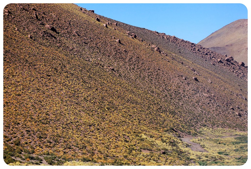 atacama desert chile scenery