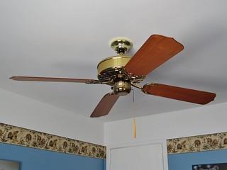 Fan Fan Club Flickr Photo Sharing