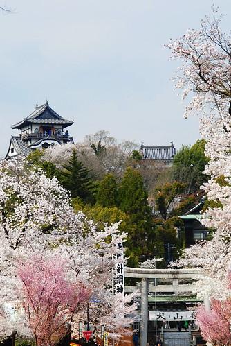 Inuyama Spring 2014 020r