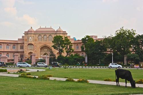 in Jaipur